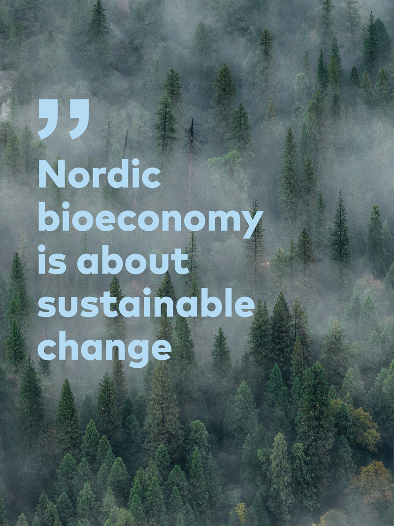 one direction citater engelsk Five principles for a sustainable bioeconomy in Nordic and Baltic  one direction citater engelsk